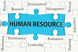 Hr Plays A Vital Role In Developing Your Business S Strategy And Taking Care Of Employees No Matter If Company Is Small Or Huge